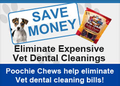 save money poochie chews lower vet dental cleaning bills